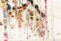 wedding // decorations / Wedding plans.