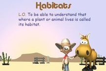 Habitats / A selection of resources to support your teaching on the topic of habitats / by TES Resources