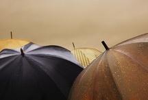 Umbrella photos