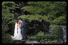 Weddings at Anderson Japanese Gardens / Rockford, IL