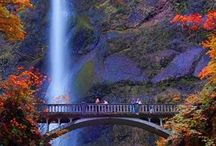 Portland, OR / Tips and travel plans for Portland, Oregon!