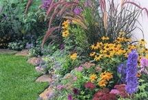 Garden, Yard & Porch / by Mindy Lewis