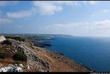 Italian coasts / Italian coasts are so amazing, this is a #photo #gallery #italian #sea