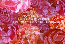 Floral / by Nadine Ursuliak