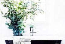 Interior design / by Centaine Walters