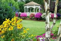 Glorious Gardens / by Grace My Table