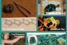 Pond Unit Study / Activities and printables for a pond theme for homeschool or classroom