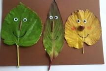 Autumn Leaf Unit Study / Autumn leaf activities + leaf activities for any season