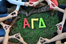Throw What You Know <3 ΑΓΔ / by Laura