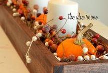 Fall/Halloween/Thanksgiving/Decorating / by Judi Timken