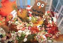Kids' Fall Activities / Fall Activities without One Specific Theme for Kids (Board Includes Links to Boards with Specific Fall Themes Such as Apples, Autumn Leaves, Pumpkins, Acorns, and Fall Holidays) / by Deb @ Living Montessori Now