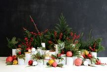 Winter Parties! / All things beautiful and holiday related! Christmas, snowflakes, branches, candles, feasts, trees, twinkle lights, stars, menorahs, ornaments, winter treats, dreidels and more!