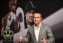 Premiere de Creed / Contamos con la presencia de figuras de la lucha libre y el boxeo mexicano.