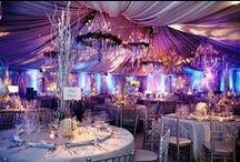 Wedding  / by Jenna Bauer