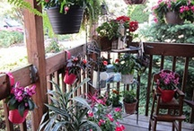 Container Gardens / by Nancy Reilly-Kelly