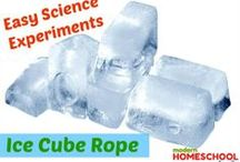 Homeschool Science / Fun & easy homeschool science projects, science experiments & ideas. / by Modern Homeschool Family