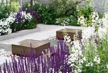Homes: Outside / Beautiful outdoor spaces. / by Little House On The Corner   Home Improvement & DIY Tips