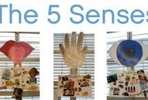 Preschool - Five Senses