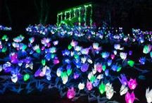 LIGHTSCAPES / The creators of the Great Jack O'Lantern Blaze present an EXCITING SPRINGTIME experience: An immersive journey into a garden fantasy featuring colorful creatures and fantastic flowers at Van Cortlandt Manor in Croton-on-Hudson, NY