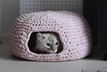 Crochet  / by Susanne