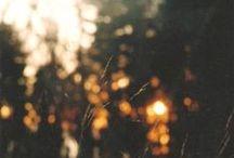 Ljus/Light / by Åsa Carlsson