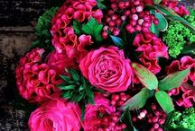 Florals in Every Color for Every home / Fresh flowers make my heart sing ♥