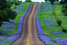 Road Trips / Photos/Videos of excellent travel destinations around Texas. O, the places you'll go...