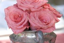 Pretty in Pink! / All Things Pink! / by Becki Swindell