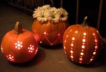 Harvest time / Thanksgiving and Halloween / by Pam Malkiewicz