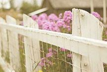 Potager (Kitchen Garden)