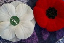 Planning for Peace Poppies
