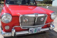 MG 1100 1300
