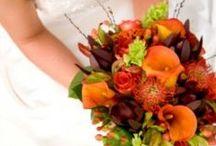 Wedding Ideas / The countdown begins! / by Rachel Brown