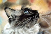 Fine ART - CATS / by Catherine Wadhams