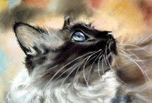 Fine ART - CATS