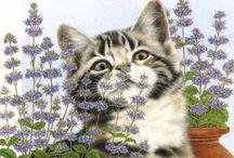 Artist - Anne Mortimer's Animals