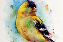 Backyard Birds -Fine Art