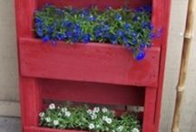 For the outdoors! / Gardening, landscaping ideas :)