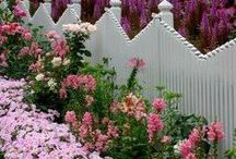 Fences With Flowers