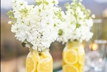 Spring/Summer Wedding / by Claudine Ursino