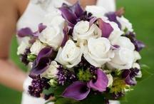 M & N Wedding / by Claudine Ursino