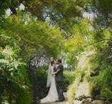 Weddings at Sunken Gardens / Weddings held at Sunken Gardens, St Petersburg, Florida, Bride and Groom portraits