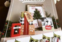 Weihnachten/Christmas / Stampin`Up!, Stampin Up, Projekte, Projects, Stempelmafia, Cards, Karten, Verpackung, Boxes, Ideas, Ideen, Inspiration, Techniques, Tutorials, Anleitung, Video, Weihnachten, Christmas, Watercolor, Aquarell, Gift, Geschenke, Adventskalender, Goodies, Gastgeschenke, giveaway