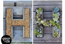 Gardening Inspirations / For the love of plants, flowers and digging in the dirt! / by Karen Harlan