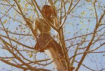 Tree hugger / He who plants a tree plants a hope. ~Lucy Larcom / by Karen Harlan