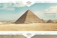 • Website Design •