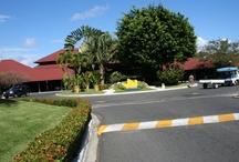 Punta Cana Bavaro Princess / What a wonderful resort to stay at.