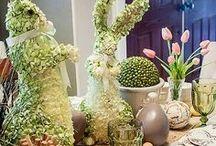 Spring into the season  / by Elizabeth