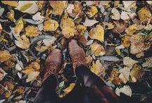 AITA Autumn