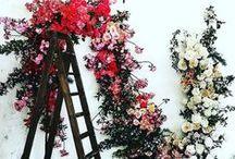 floral~ / by Brooke Hagen